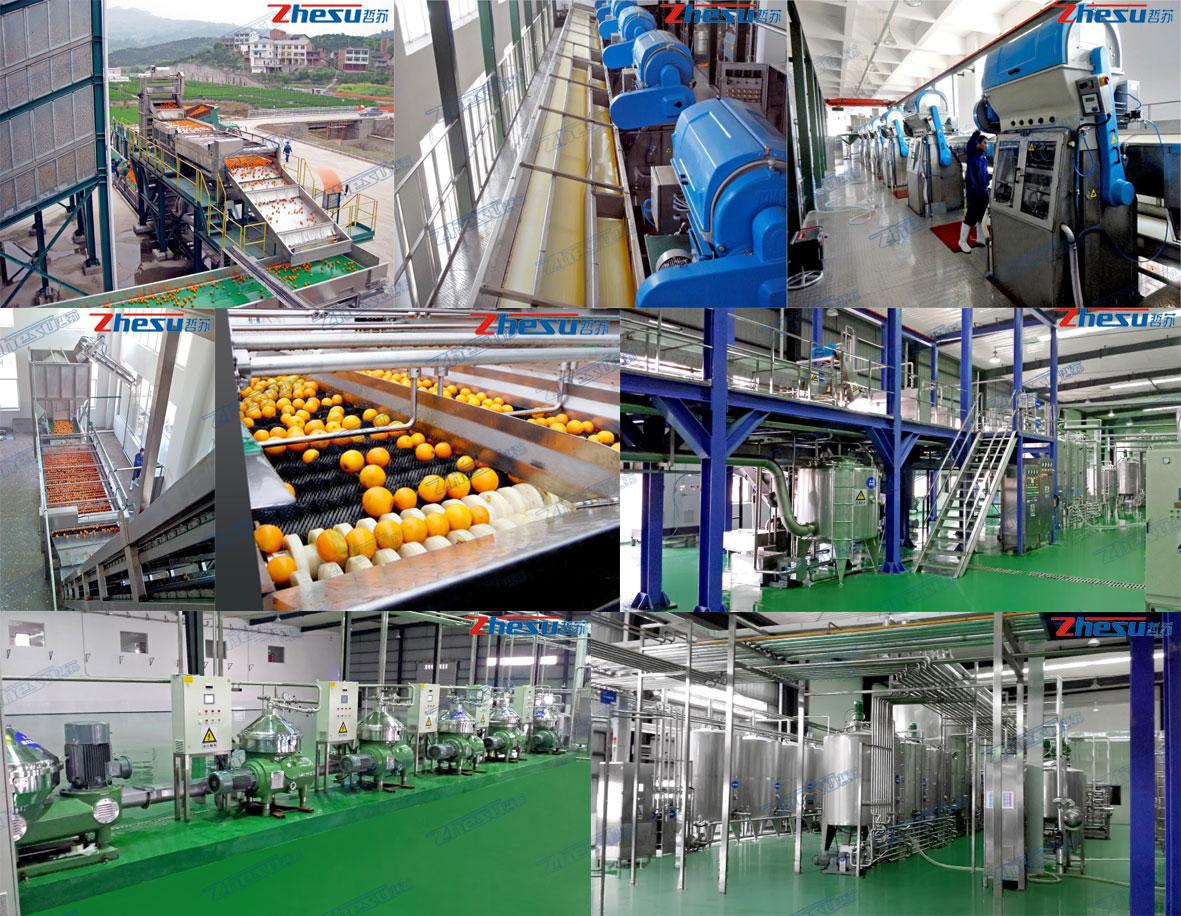 橙、柠檬、鲜柚加工系统工程