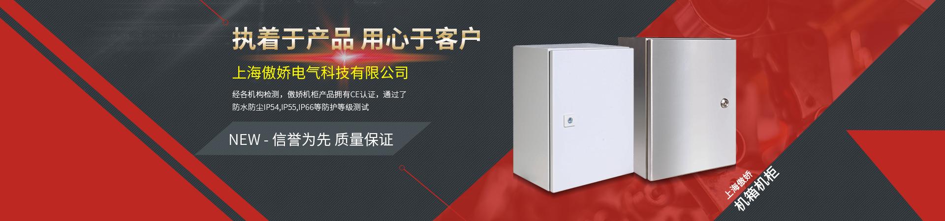 上海傲嬌電氣科技有限公司