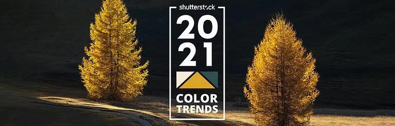 等不及pantone了,先一睹其他大廠的2021年度色!
