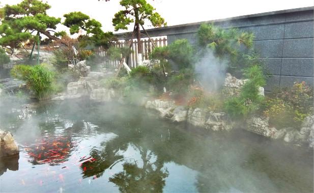 庭院别墅雾森系统.水景造雾案例