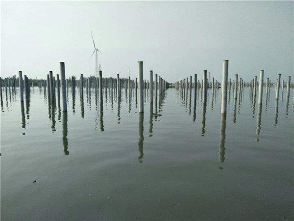 天岗湖300兆瓦水上光伏发电