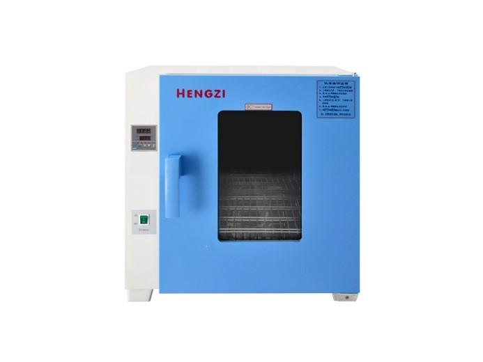 电热恒温鼓风干燥箱HGZF-101