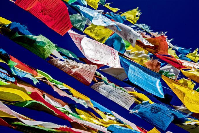 岗吉教育·藏语基础课线上课堂风采