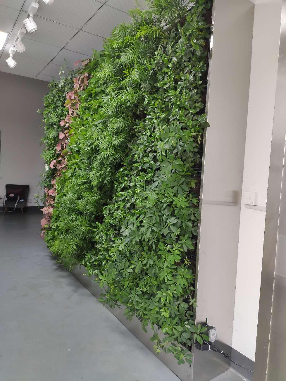杭州古北布艺植物墙案例