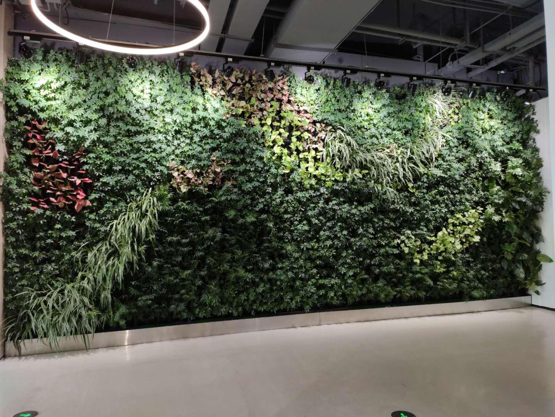 杭州城市阳台党群服务中心绿墙