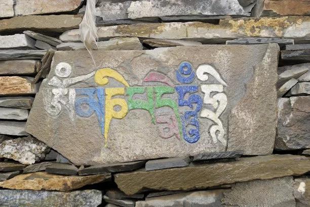 外国人用藏语谈论藏族学术