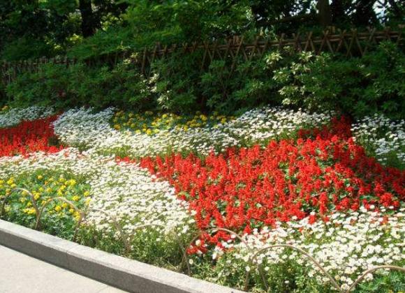 园林绿化的色块大小如何界定?