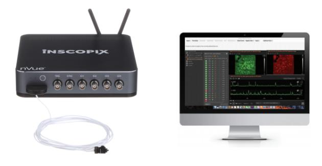 【Inscopix 亚洲专场系列直播--第三期】nVue双色神经元超微成像新品发布及实验案例分享