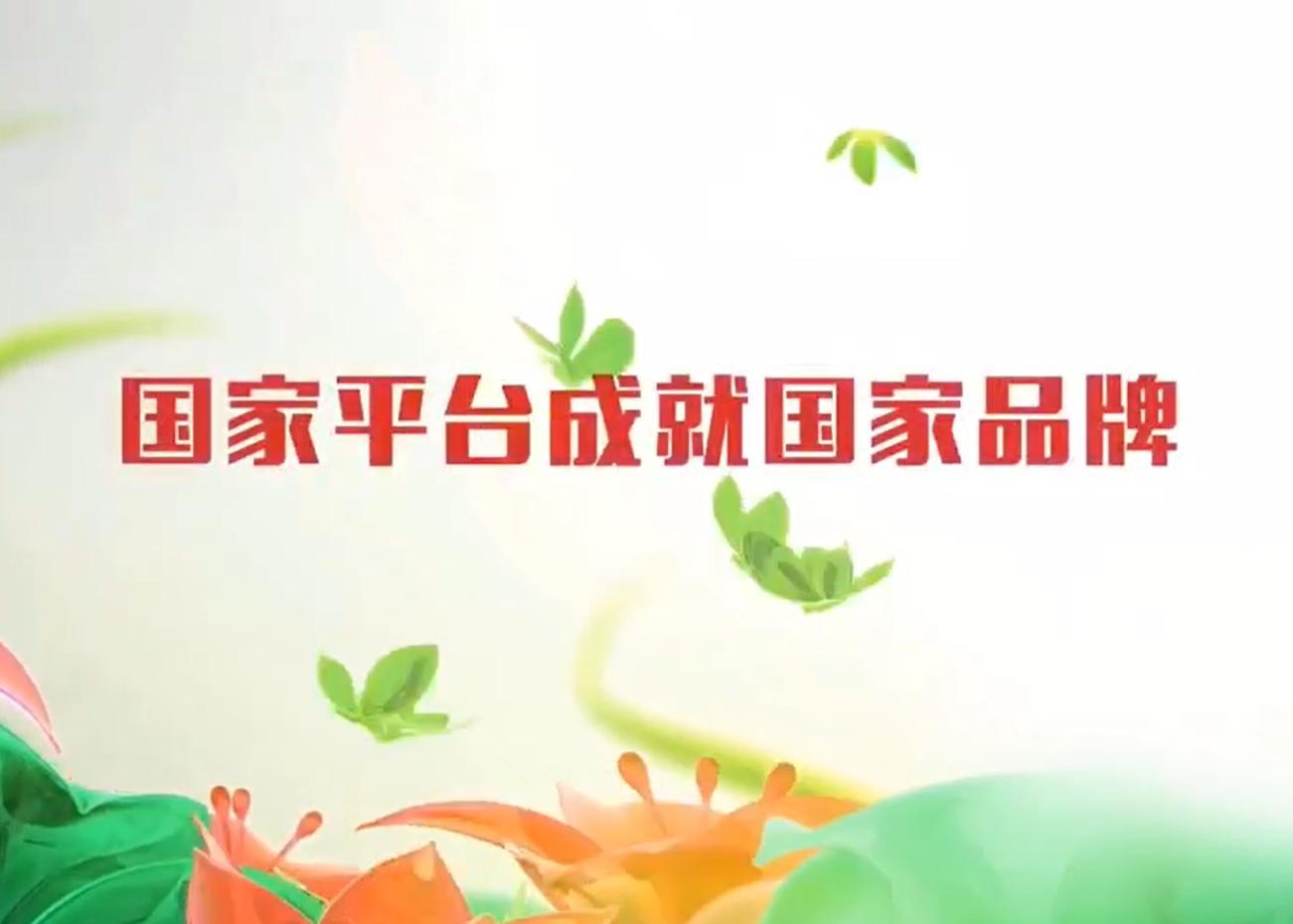 閩佳美宣傳片
