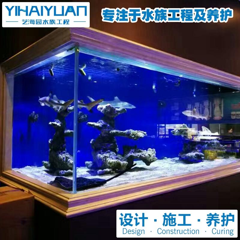 鲨鱼缸 (4).jpg