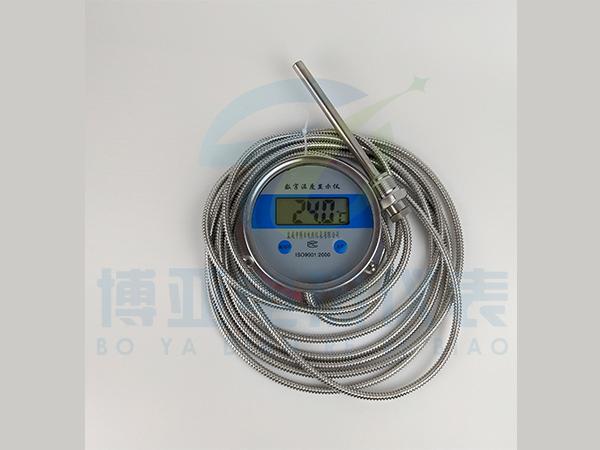 WST/DTM-491數字溫度計 不銹鋼軟管數顯溫度計