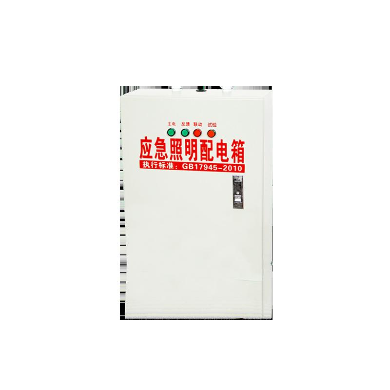 应急照明配电箱ZX1011 1021