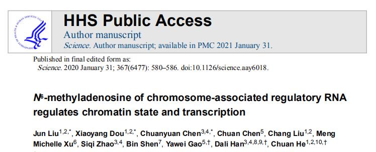 N6-methyladenosine of chromosome-associated regulatory RNA regulates chromatin state and transcription