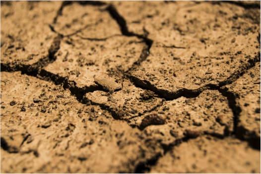 Die 4 kritischen Eigenschaften effektiver Bodenverbesserungsmaterialien (GEM)