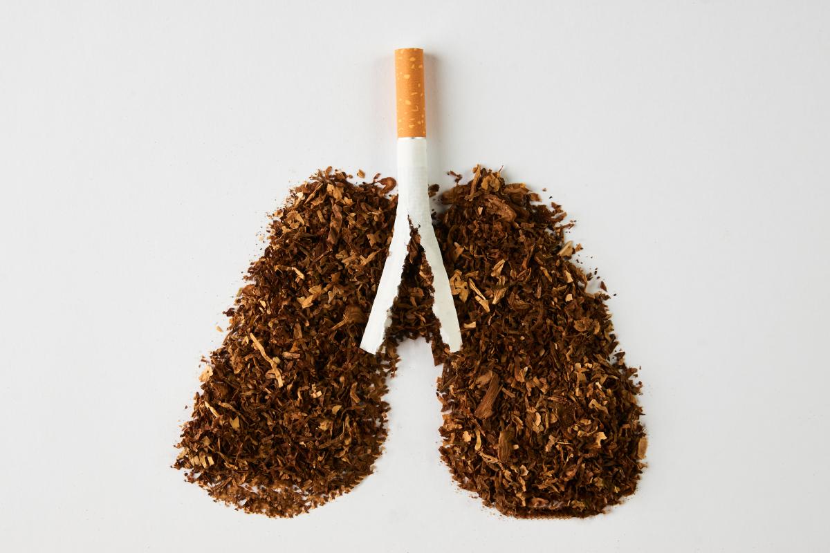 吸烟危害.jpg