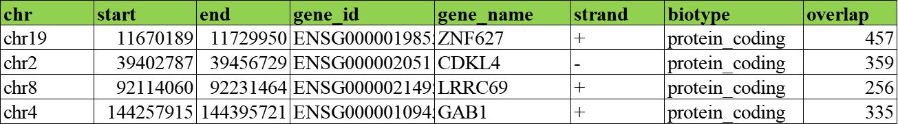 2. eccDNA的基因注释