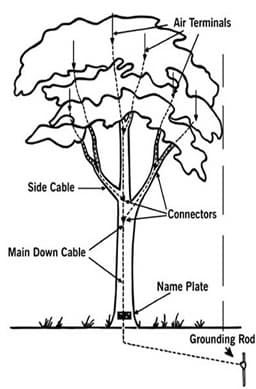 tree lighting protection system