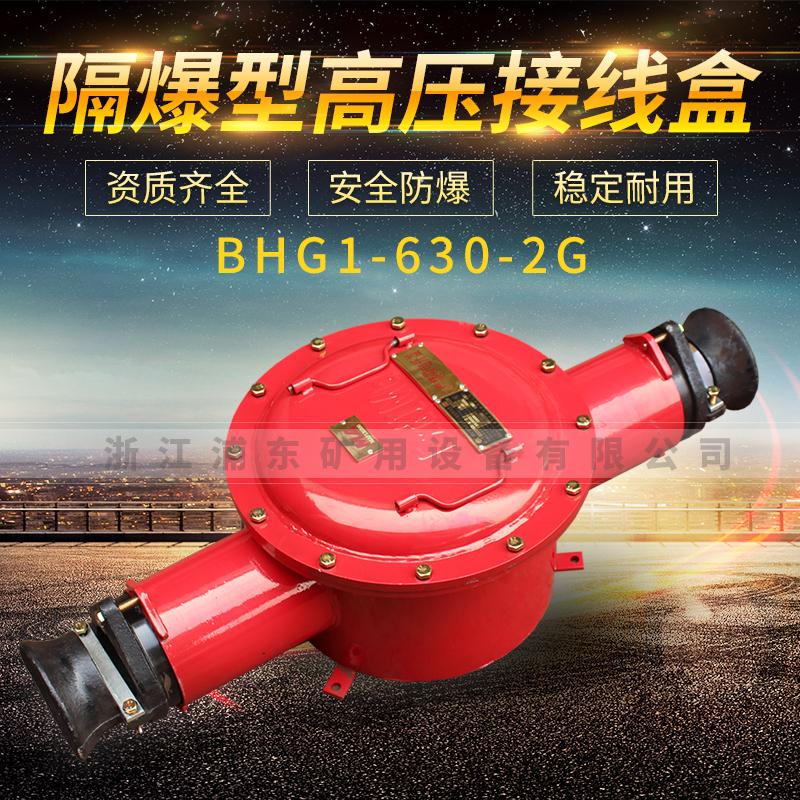 隔爆型高压电缆接线盒-BHG1-630-2G