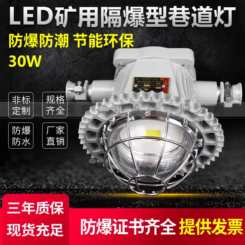 LED矿用隔爆型巷道灯-防爆防潮,节能环保-30W