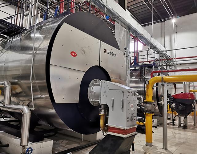 露露股份有限公司一体冷凝燃气蒸汽锅炉项目