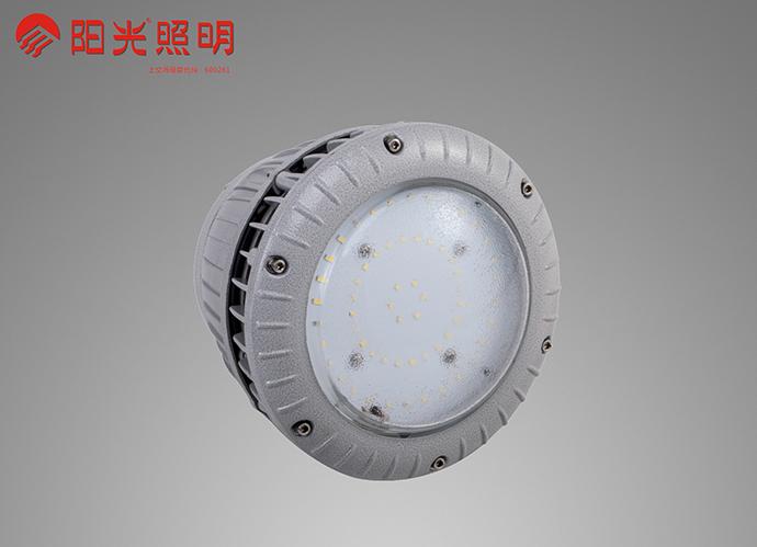 LED防爆灯(阳光)G型
