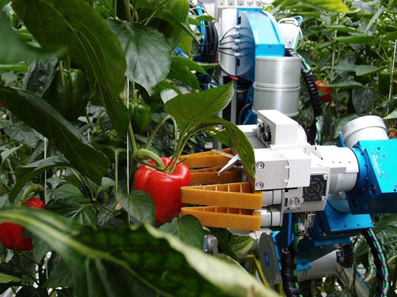农业采摘机器人2.jpg