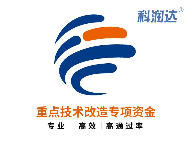 上海市重点技术改造专项资金项目成功案例