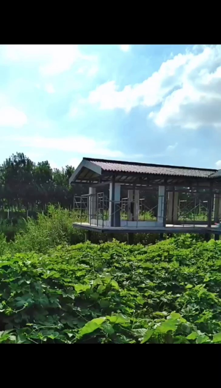 農村別墅,別墅