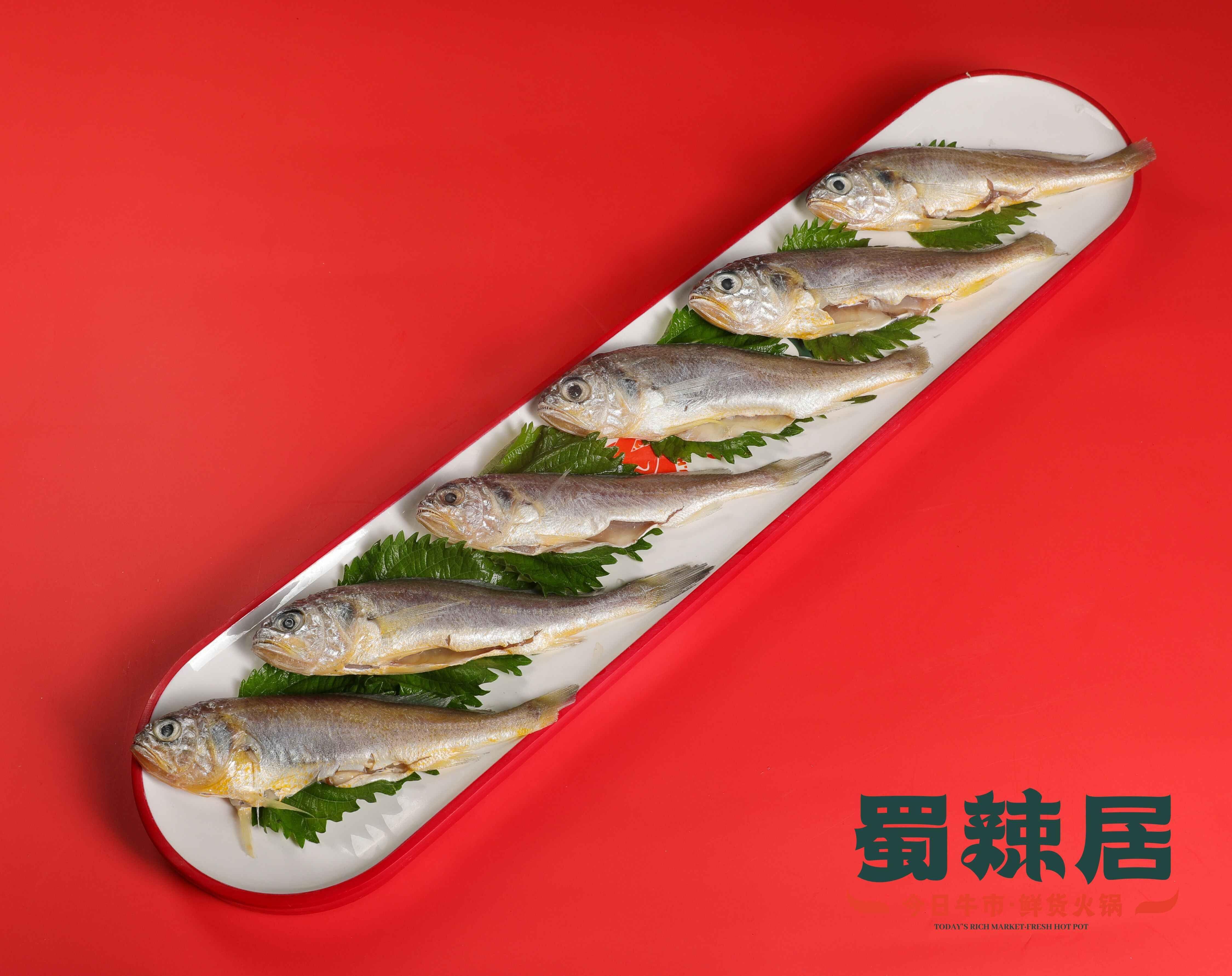 蜀辣居火锅新菜品:深海小黄鱼