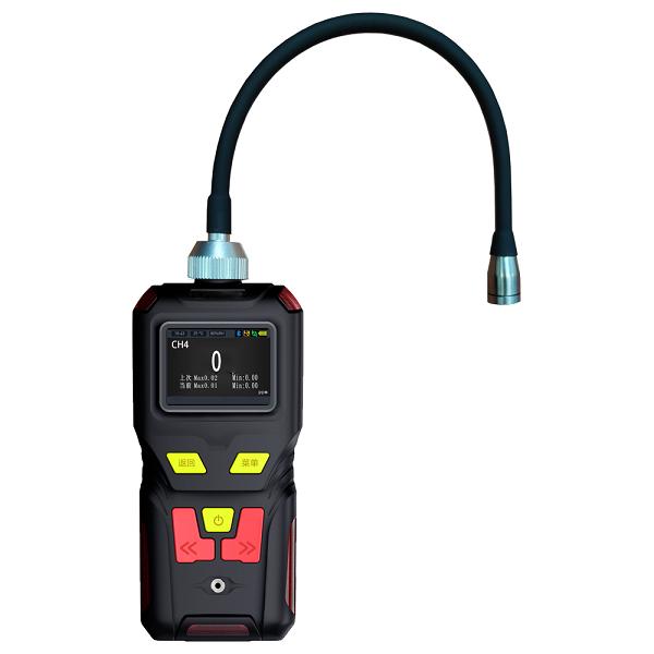 GWE4B - 便携式甲烷检测仪