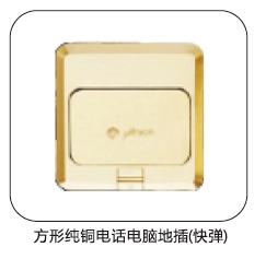 方形纯铜电话电脑地插
